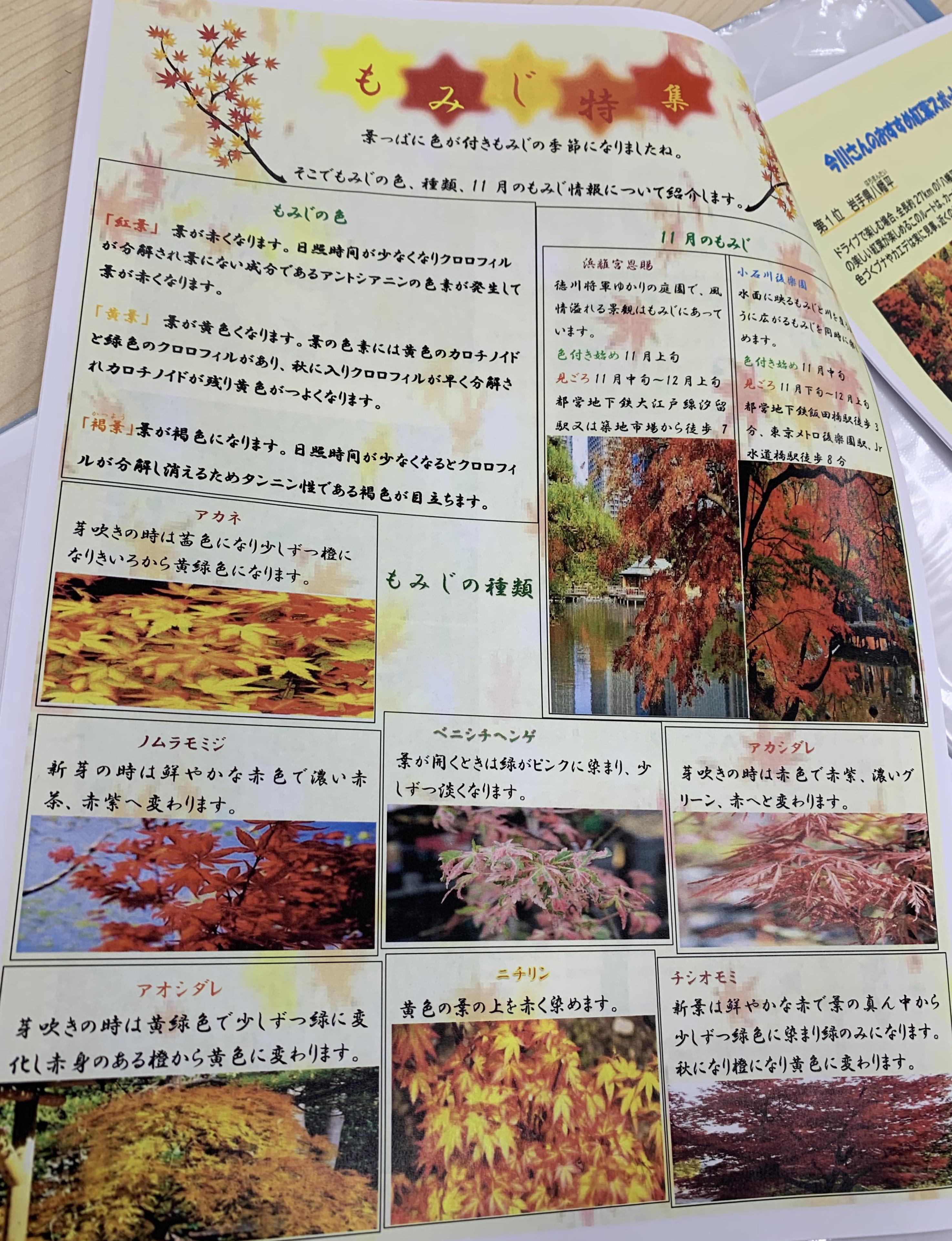 ココルポート新小岩事業所での、秋冊子