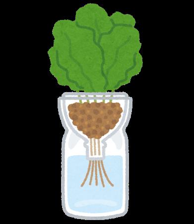 好きな植物を育てているイメージ