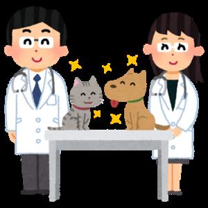 獣医師たちと猫と犬