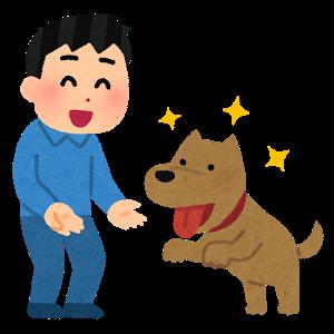 中型犬と遊ぶ男性